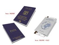 Faire-part Passeport Voyage Bar Mitzvah  - Bat Mitzvah